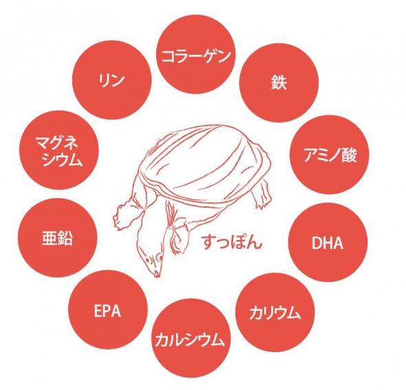 sozai_suppon_1