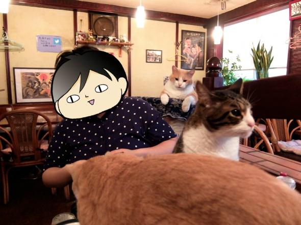 猫のいる居酒屋